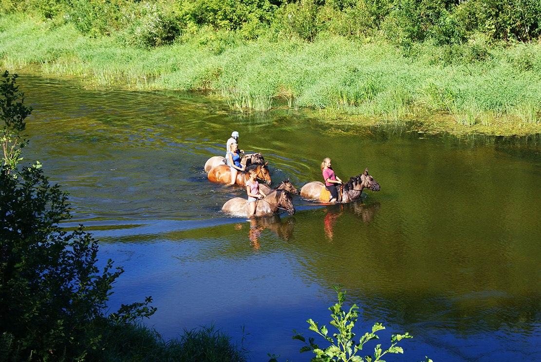 как прогуляться по реке без лодки - только на лошади