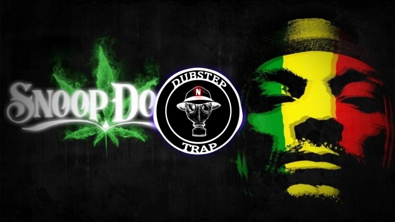 Snoop Dogg Smoke weed every day Hedegaard Remix