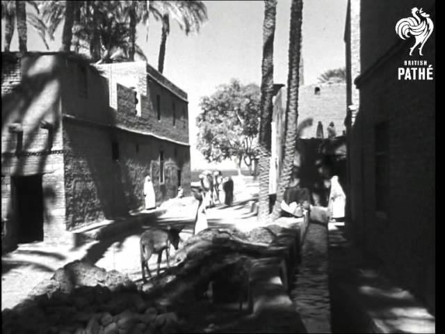 Egypt (1940-1949)