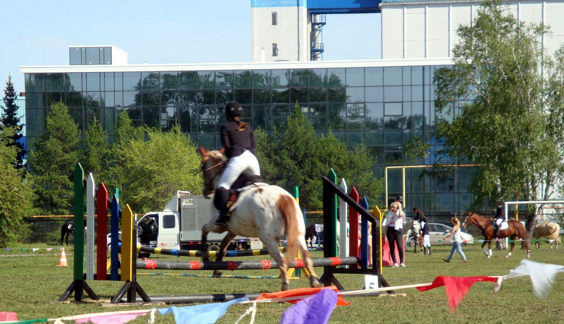 Востребованные профессии сферы физической культуры и спорта