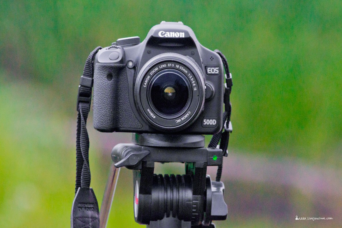 что используют фотографы для печати люблю