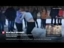 """В Смоленской области две школьницы подрались из-за любви к молодому человеку в прямом эфире """"Перископа"""""""