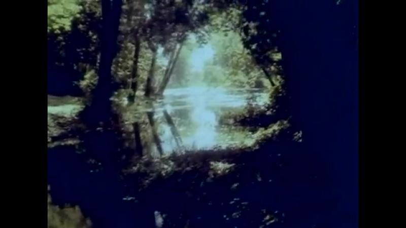МНЕ СНИЛАСЬ МУЗЫКА. Укртелефильм, 1987