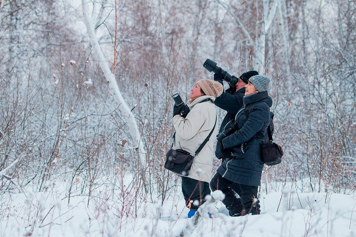 Донгузловский заказник, фотоанималистика, Птицы Челябинской области