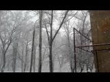 по снегу,летящему с неба. глубокому белому снегу.....