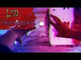 LSD (трип репорт) ИДЕАЛЬНЫЙ ПСИХОДЕЛИК