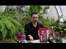 Что нужно знать об удобрениях для комнатных растений