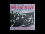 Various - Last of the Garage Punk Unknowns Vol4 1965-67 (FullVinyl 2015)