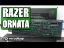 RAZER ORNATA обзор клавиатуры