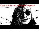 Егор Летов - Русское поле экспериментов (Как в мясной избушке помирала душа)