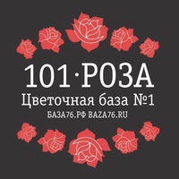 baza_101