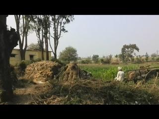 Индия Дороги 1