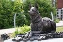 Памятник фронтовой собаке, г. москва