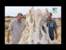 BBC Заповедник в дебрях Африки 23 серия Реальное ТВ животные 2006