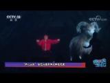 171108 EXO Lay Yixing @ CCTV-15 News