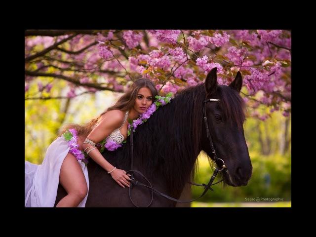 Amr Diab - El Leila - Isabella Arabic Belly Dance - عمرو دياب الليلة فيديو كليب HD