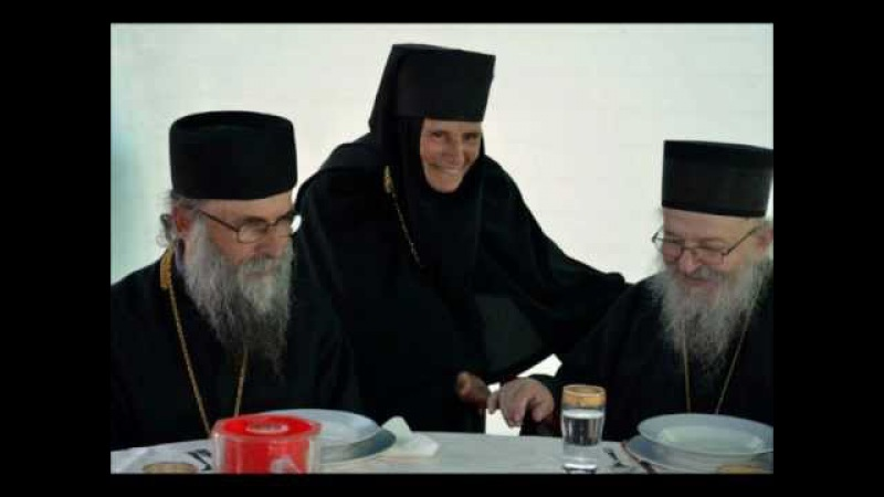Episkop Artemije o jeresi ekumenizma