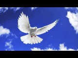 George Acosta feat. Fisher - Beautiful (Original Mix) HQ