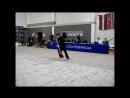 Lithuanian Open wushu chempionship 2017