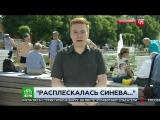 Журналист НТВ получил по лицу от ВДВшника в прямом эфире