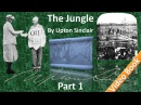 Part 1 - The Jungle Audiobook by Upton Sinclair (Chs 01-03)