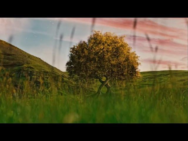 Кам'яний Гість - Відповідь вітер десь носить... Kamyaniy Gist - Blowin' in the Wind by Bob Dylan - Ukrainian cover