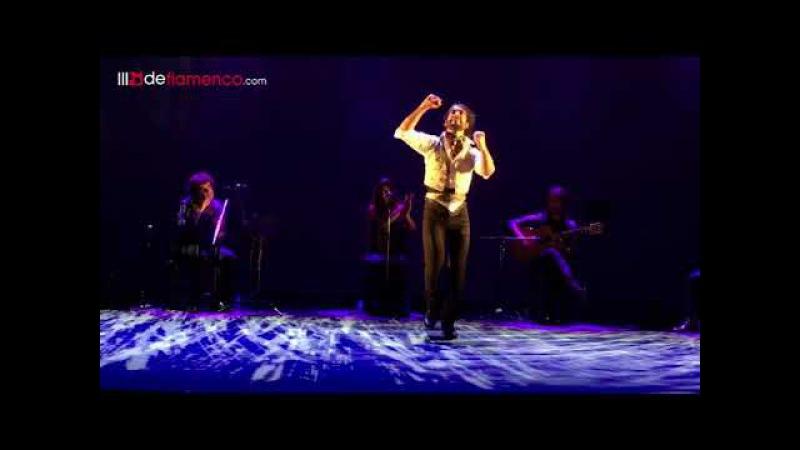 David Martín en Flamenco Joven