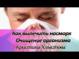 Как вылечить насморк. Очищение организма и сопли  Кристина Хлыстова