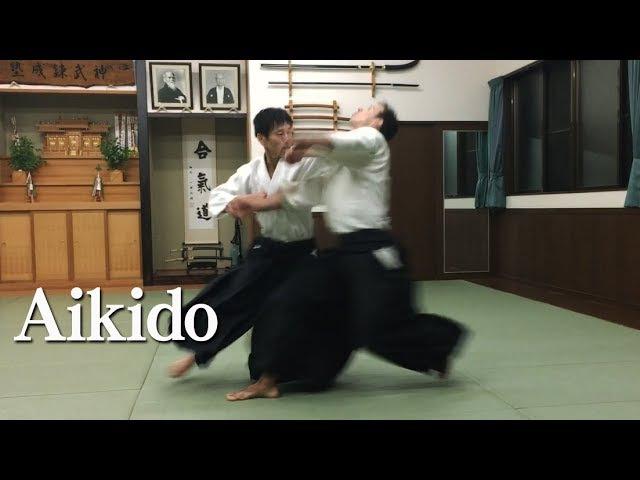 突き自由技‐合気道 Aikido on strike attacks