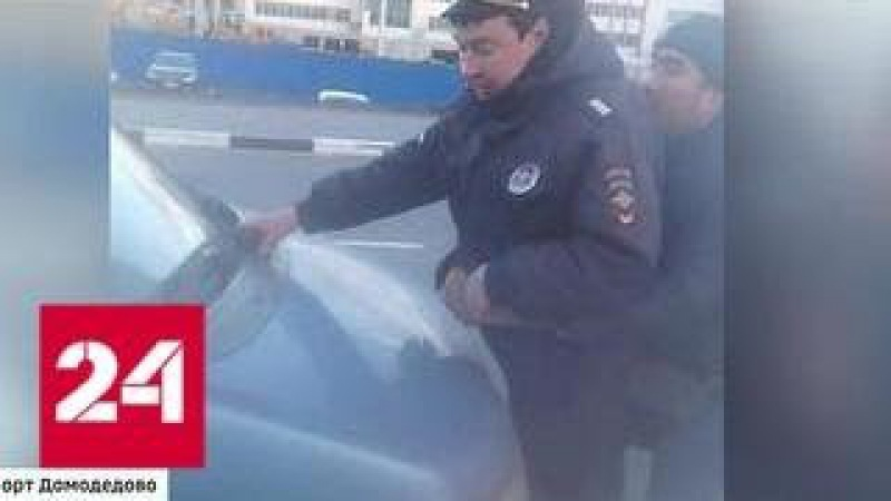 Домодедовский Кинг Конг: таксисты-нелегалы напали на полицейских - Россия 24
