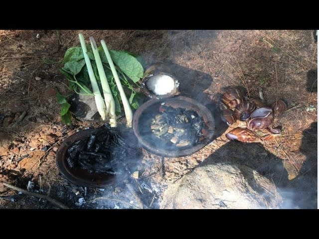 Primitive Technology Looking For Food (Snail)* / Survival Skills Primitive / 22.10.2017