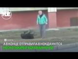 В Караганде сняли на видео, как женщина избивала свою собаку на прогулке