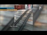 Вот такой итог видео о нападение полицейского на девушку в Новокузнецке