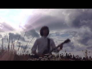 Maximal disorder with destructive rays from the sky in a field with daisies