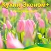 Кухни,  шкафы-купе ЭКОНОМ+ Курск!