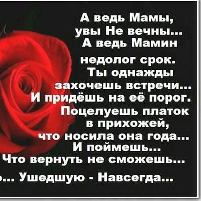 Алёна Курицина