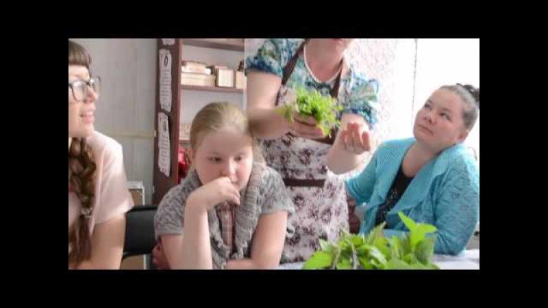 Зеленый обед вместе с Территорией счастливых людей, Мелеуз, Башкирия