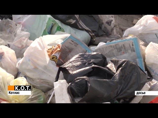 Обнаружены 11 несанкционированных свалок на территории города