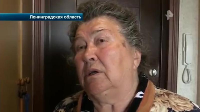 РЕН ТВ. Новости - Шокирующие подробности массовой аварии в Ленинградской области