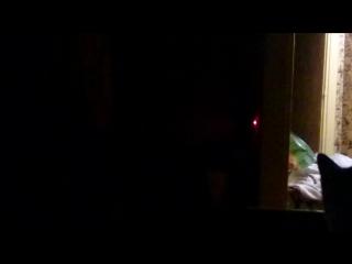 Один из вариантов применения собаки и лазера для ленивых. Ну, или способ обучить зверюгу включать/выключать свет