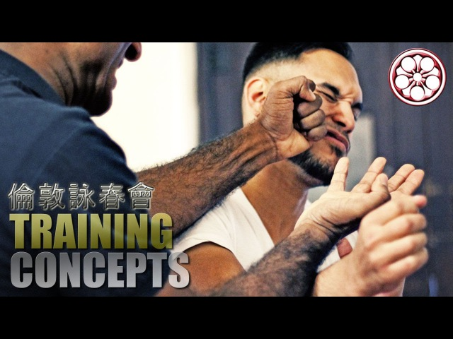7 MOST EFFECTIVE Taan Sao Variations in Wing Chun