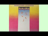 Mahavishnu Orchestra - Birds of Fire (full album) (VINYL)