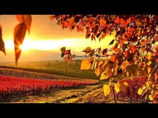 Melodic Progressive House mix Vol 6 (Autumn Colors) (rework)