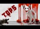 Top 5 ANIMAL Maniacs - be careful!