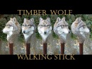 Timber Wolf and Shed Antler Wood Carved Walking Stick