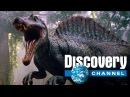 Discovery - Cамый большой динозавр хищник - Спинозавр