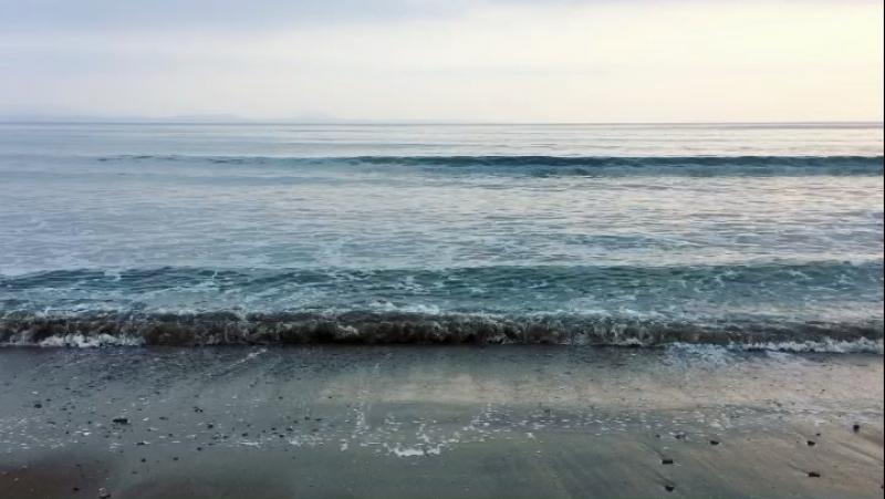 Тихий океан 🌊