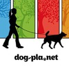 Выгул собак в Спб |Санкт-Петербурге| Dog-pla.net