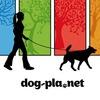 Выгул собак в Спб  Санкт-Петербурге  Dog-pla.net