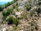 На Вершине Горы Бештау